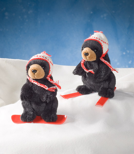 Black Bear Snowboarder